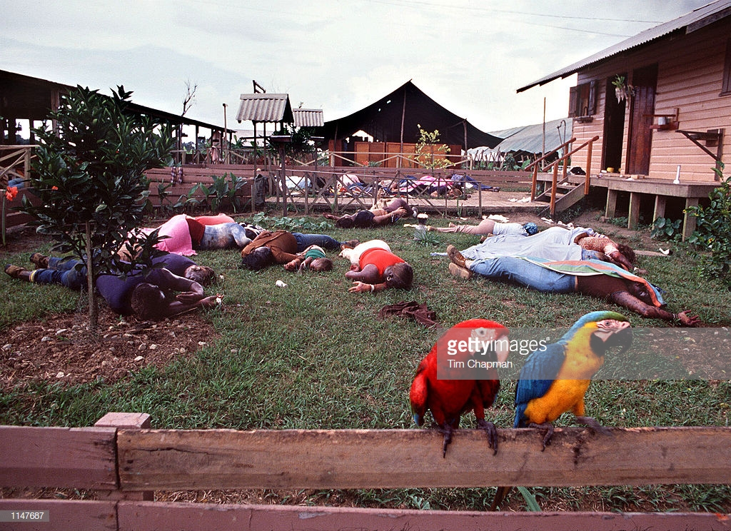 Jim Jones, leader of the People's Temple Cult, massacred 912 people, in a mass suicide in the jungle of Guyana spared only these two Macaws in Jonestown. The tragic 20th anniversary of the Jonestown Massacre is November 17, 1998. (photo by Tim Chapman)