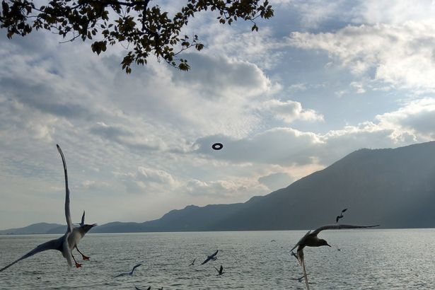 PAY-I-DOUGHNUT-BELIEVE-IT-BUSINESSMAN-SNAPS-UFO-OVER-LAKE-AND-ITS-A-BIZARRE-SHAPE
